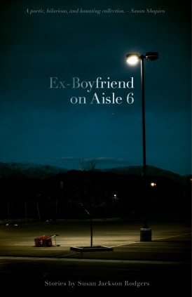 Aisle 6 book cover
